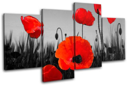 Poppies Flowers Floral - 13-1260(00B)-MP04-LO